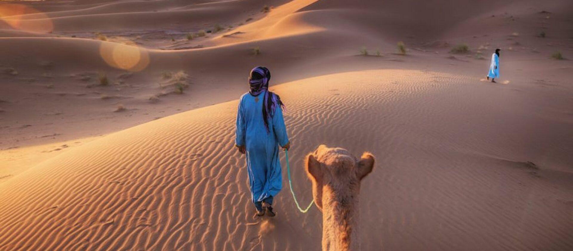 Tuareg Expeditions